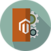 Customized Magento Development